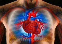 HIV may be risk factor in heart failure