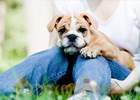 Oxytocin behind bond between humans and dogs