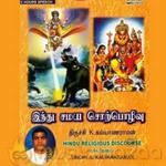 Hindu Religious Discourse Vol 13