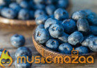 Eating Blueberries Can Improve Your Vision and Memory