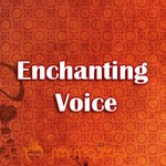 Enchanting Voice