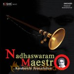 Nadhaswaram From Maestros