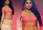 Shriya Saran's Latest Photos in Traditional Avatar