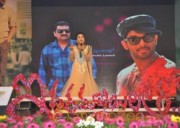 Iddarammayilatho Audio Launch Photos